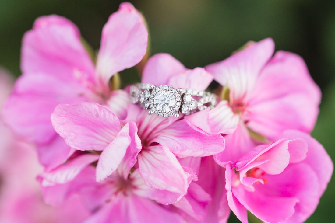 Close up of the engagement ring in beautiful pink flowers during this engagement photography session in Winter Garden with Orlando photographer