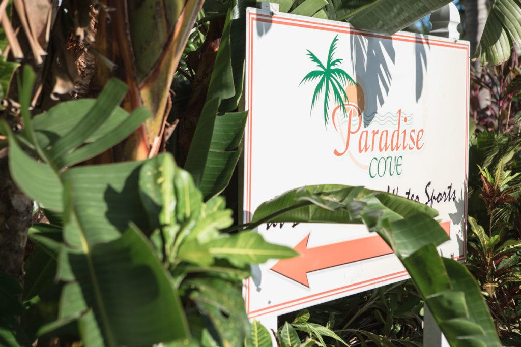Paradise Cove wedding photography by top orlando photographer