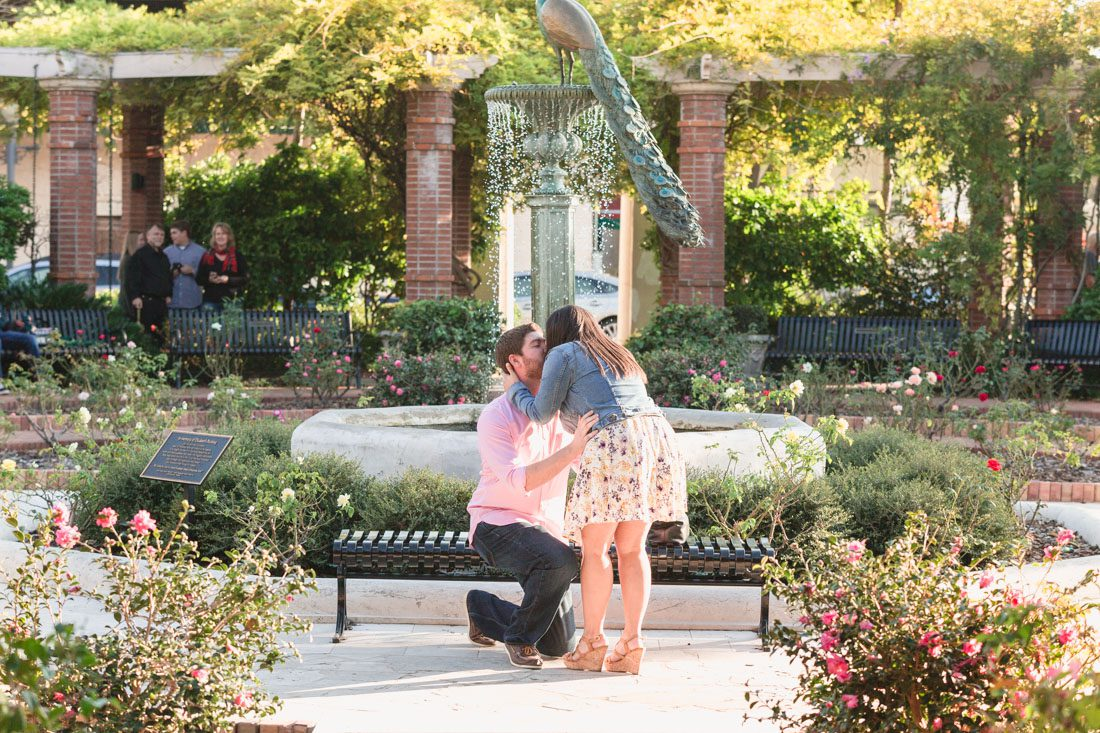Surprise proposal photography at a rose garden in Winter Park by top Orlando wedding and engagement photographer