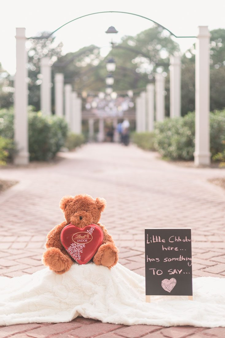 Surprise proposal photography in Orlando at Disney's Port Orleans Riverside resort