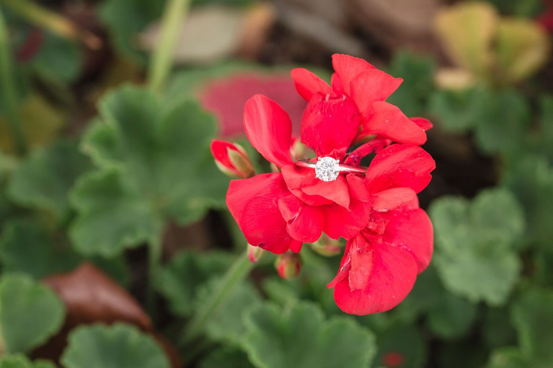 Close up shot of the engagement ring during a photo shoot at the Boardwalk in Orlando