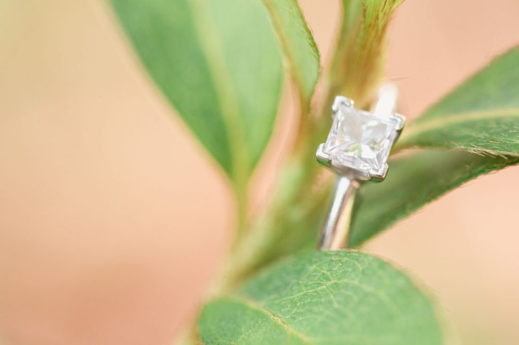 Engagement ring close up on a plant at Kraft Azalea gardens during this romantic Winter Park engagement shoot