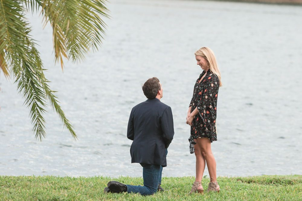Photo of a surprise proposal in downtown Orlando at Lake Eola captured by top Orlando engagement and wedding photographer