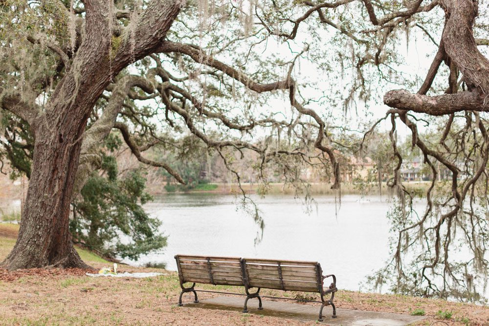 Surprise marriage proposal under a tree picnic style by the lake in Downtown Orlando Florida
